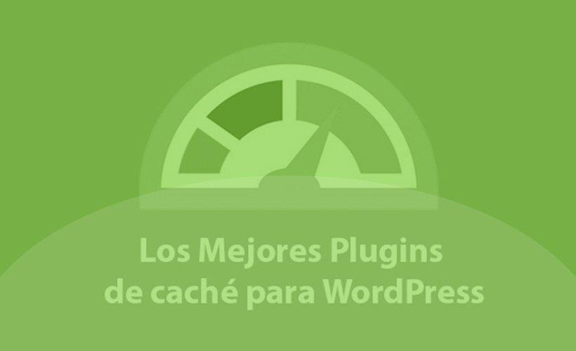 plugins seo
